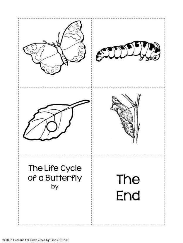 caterpillar to butterfly book
