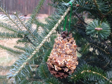 pinecone and peanut butter bird feeder