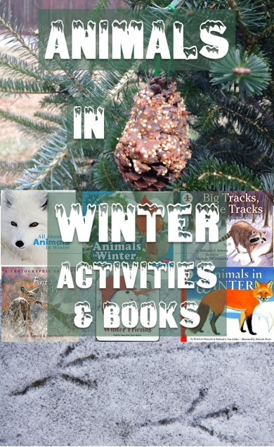 Animals In Winter Observation Activities & Books