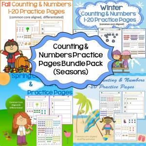 counting & numbers bundle pack