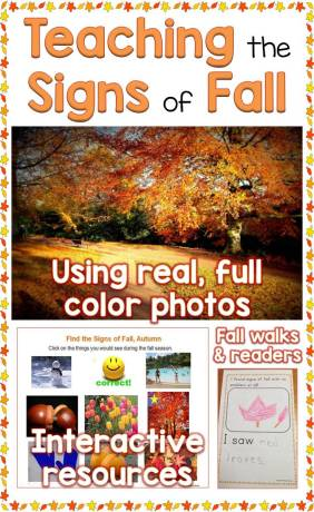 Teaching the Signs of the Fall, Autumn Season